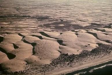 חולות בישראל ותהליכי ייצובם הטבעי