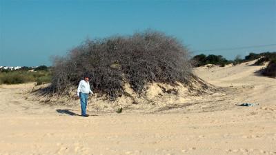 Lesson 1: Caesarea