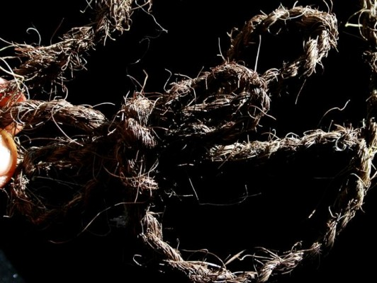 A rope made of a palm with black trunk-fibers
