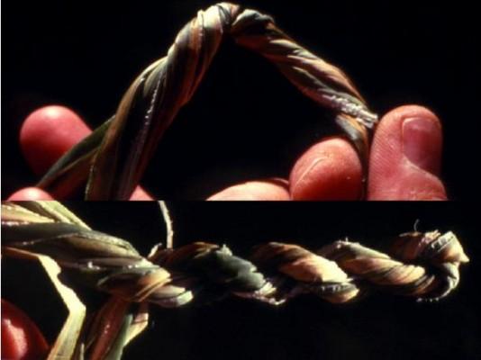 """פיתול קבוצת סיבים והתחלת קיפולם לקראת שזירה הדדית של הגדילים; הגדילים שזורים לחבל ומוסיפים סיבים נוספים, כאשר זרועות """"הV"""" של התוספת מצטרפים כל אחד לגדיל המתאים (סמוך לאצבעות בתמונה התחתונה)."""