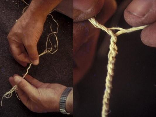 שזירת חוט מסיבי קליפה של מתנן שעיר.
