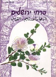 Flowers of Jerusalem (Hebrew)